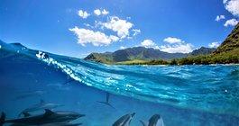 Reunion – jedna wyspa, cały świat