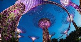 Сингапур #5