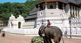Sri Lanka #5