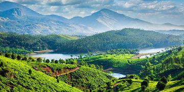 Tylko dla Ciebie – Herbaciane serce Kerali