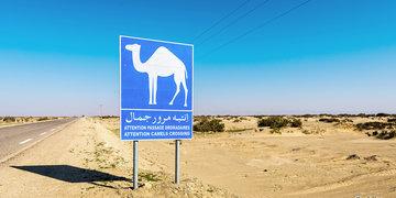 Saharyjski off-road