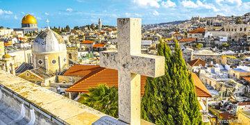 Oliwki w ogrodzie Getsemani