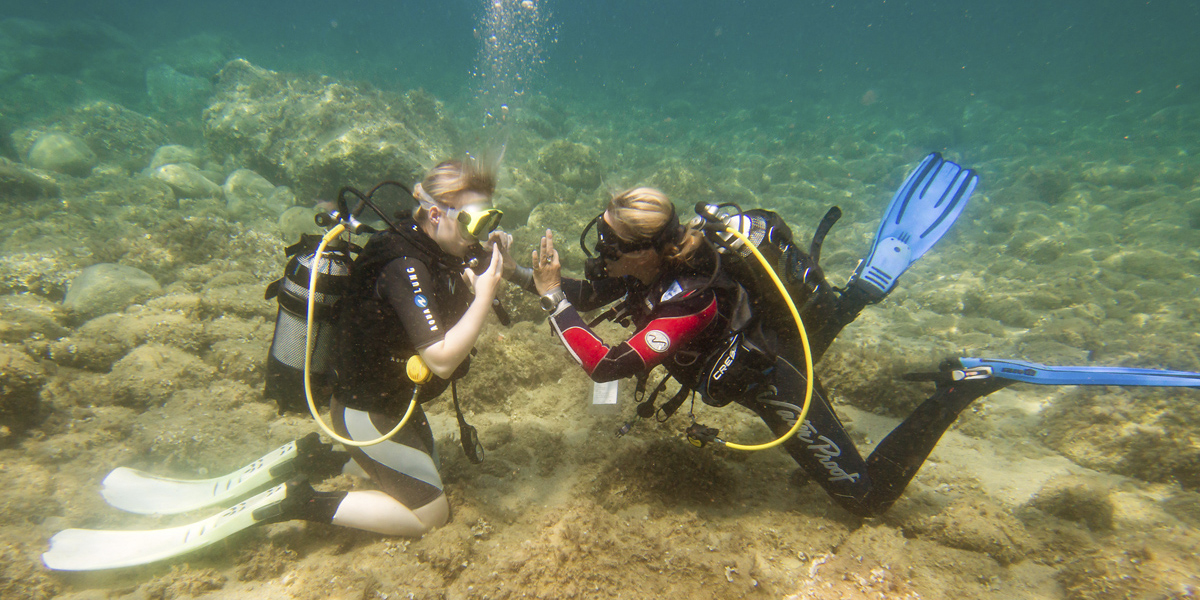 Szkoła nurkowania - kurs PADI OWD