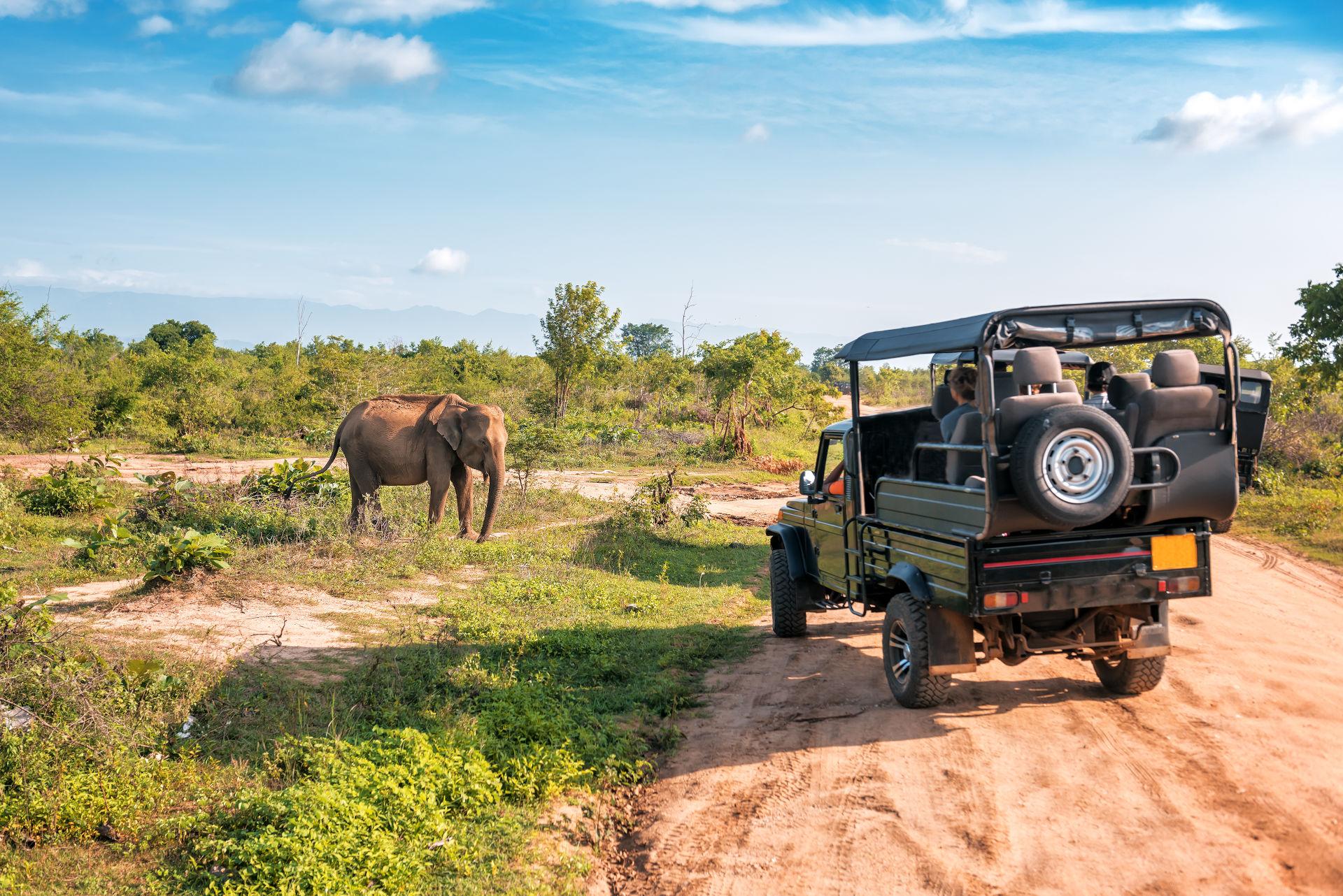 randki romantyczne w Kenii
