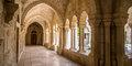 Getsemanės sodo alyvuogės #6